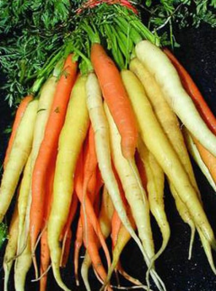 Carrots, Vegetables, Food, Health, Marie Claire Pictures