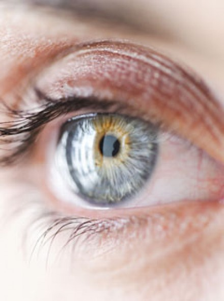 Vitamin d could prevent blindness marie claire for Fishing eye syndrome