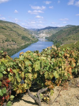 Douro, Portugal, Travel, Marie Claire