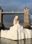 Marie Claire world news: Polar bear