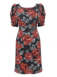 Peacocks rose bold shoulder dress