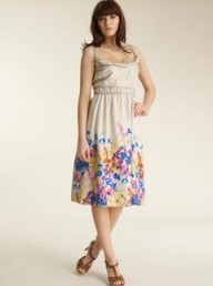 Jigsaw Secret Garden Border Dress
