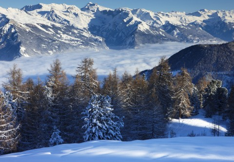 Ski holidays - Best holidays for 2011