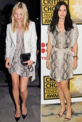 Kate Moss and Courteney Cox Lanvin dress
