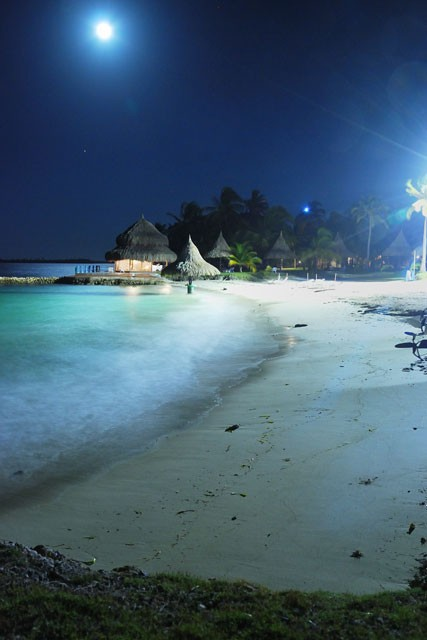 Beach by moonlight