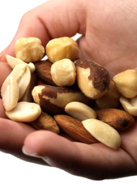 Hand of nuts (LL)