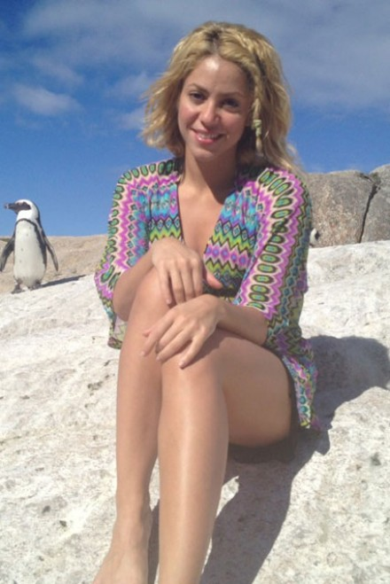 Shakira Short Hair Addicted To You Shakira attacked by a sea lion