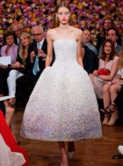 Christian Dior Haute Couture Autumn/Winter 2012