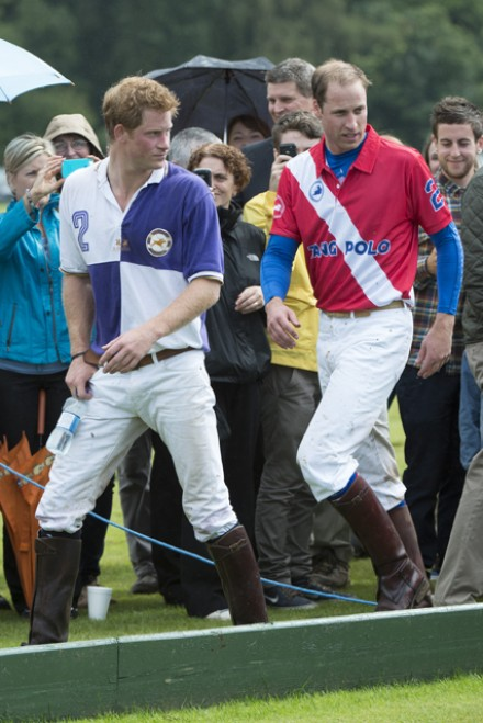 Prince Harry and Prince William Garticle