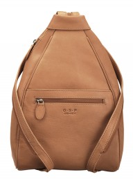 Osprey The Ayers Rucksack
