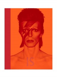 David Bowie Is - The Exhibition Book