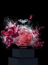 Harrods-flowers-perfumeLP.jpg