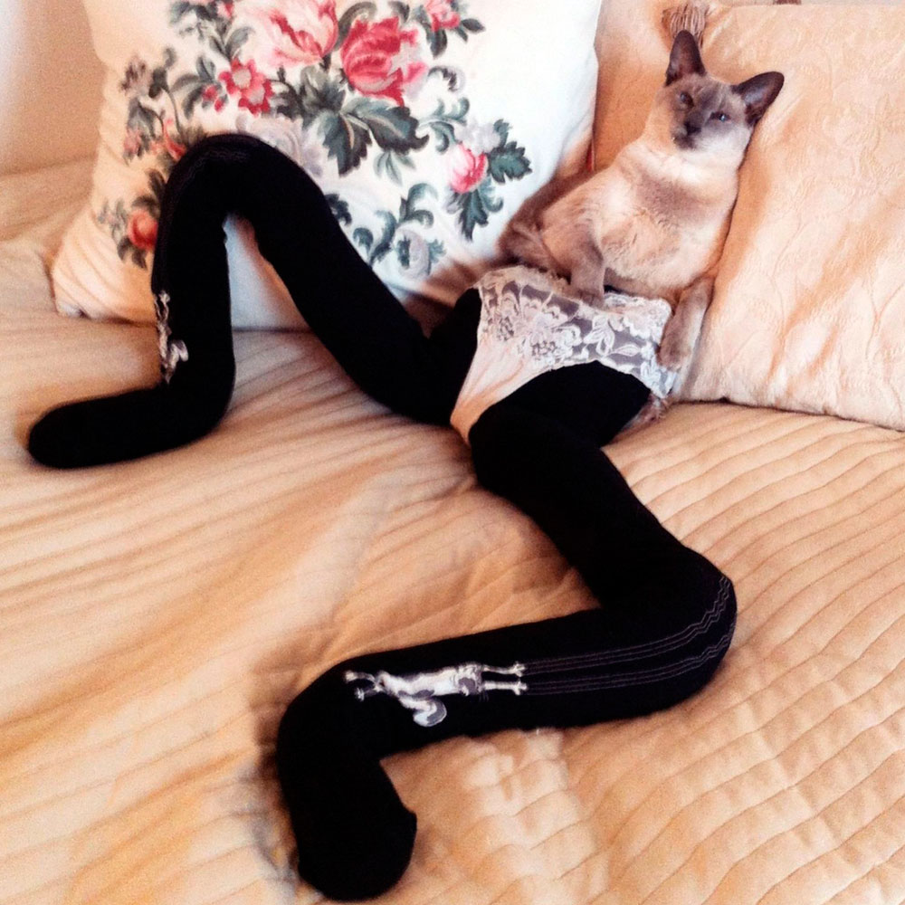 Gucci The Cat Wearing Tights