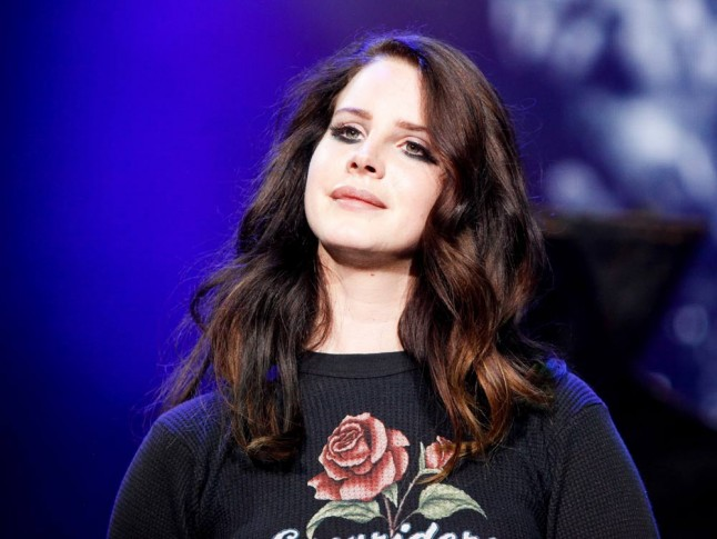 lana del rey essay According to a series of tweets, lana del rey is unhappy with the interview i did with her in which she claimed 'i wish i was dead already' but whose fault is that.