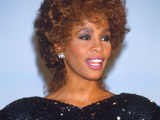 Whitney Houston Hairstyles Photos Women Hairstyles 2015 Men ...