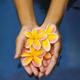 Photo of hands with flowers