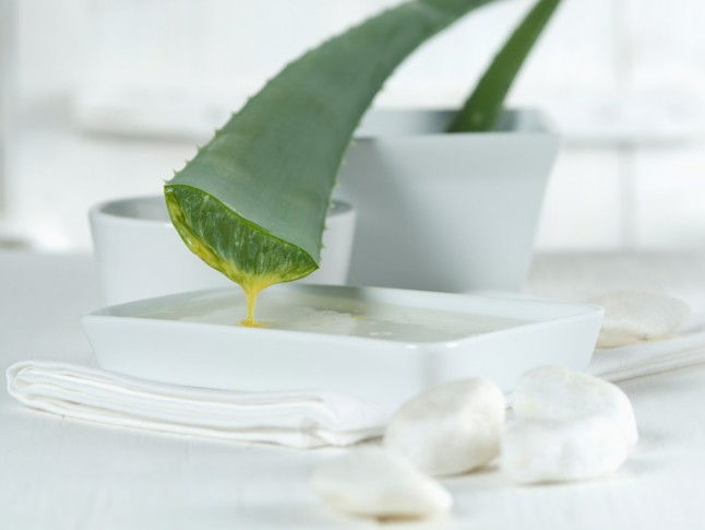 Aloe Vera Juice Benefits: They Are Endless…  Marie Claire