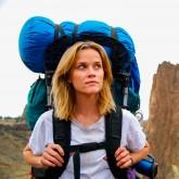 Wild - F Rating at Bath Film Festival