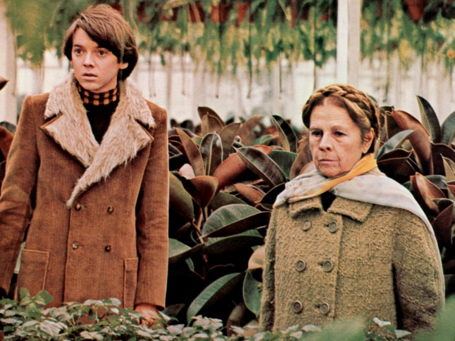 can the film harold maude be considered a cult film While harold and maude received mixed reviews from the critics  and today, this film is widely considered a cult classic that perfectly captures the experience.
