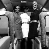 airline thumbnail.jpgv