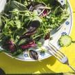 salad thumb.jpg